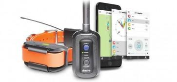 Dogtra Pathfinder GPS a výcvikový obojok