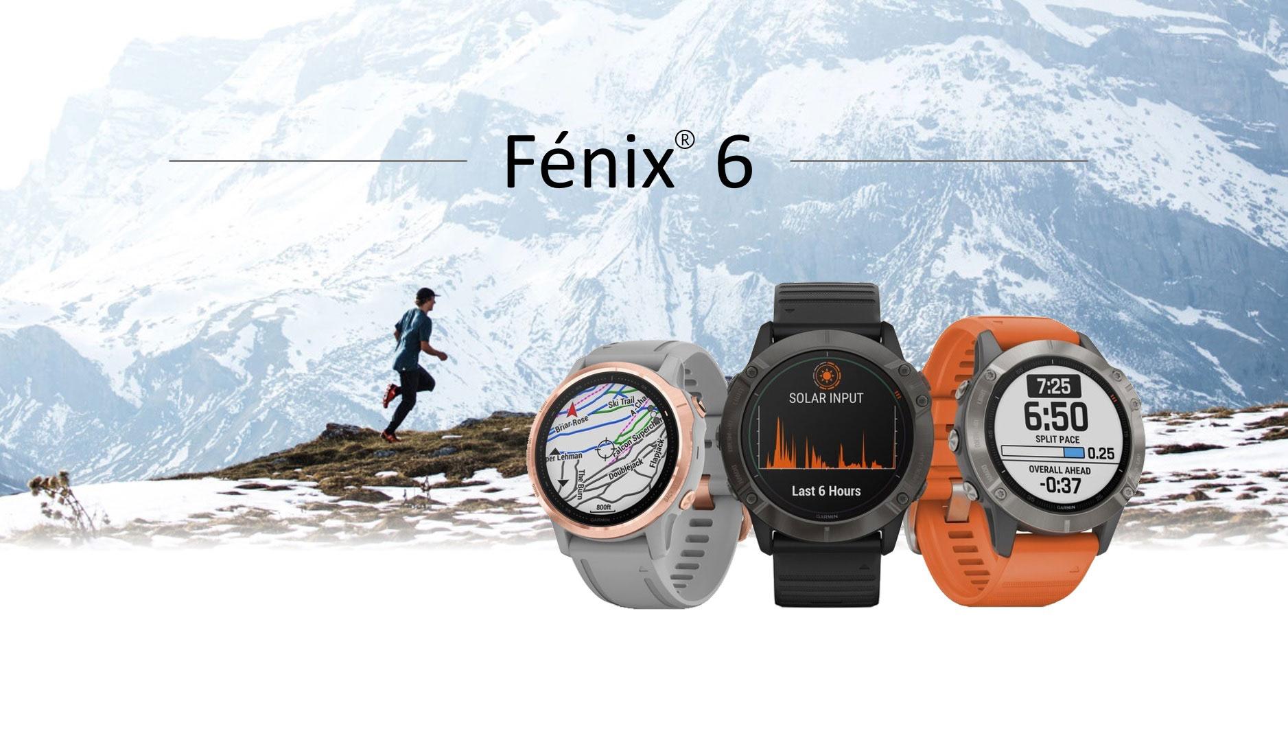 Fenix 6